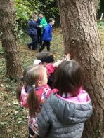 P4 Mr Byrne Forest Schools